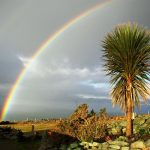 Ferienhaus, Kerry, Irland, A Grá mo Croí, Meerblick, Ferienhäuser mit Meerblick mieten in Irland - Cottages mit Seeblick mieten entlang des Ring of Kerry in Irland