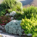 A Grá mo Croí, Garden with Sea and Mountain Views, Rent a Cottage in Ireland along the Ring of Kerry