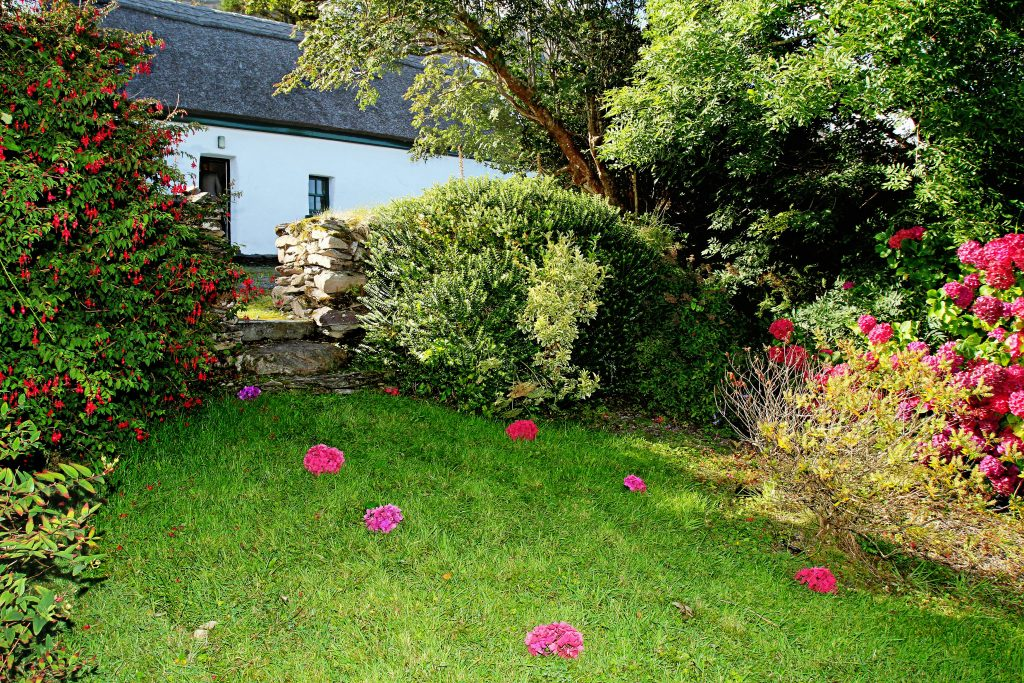 Roads Cottage 09, Garden, Rent an Irish Cottage with Sea View along the Wild Atlantic Way in Kerry