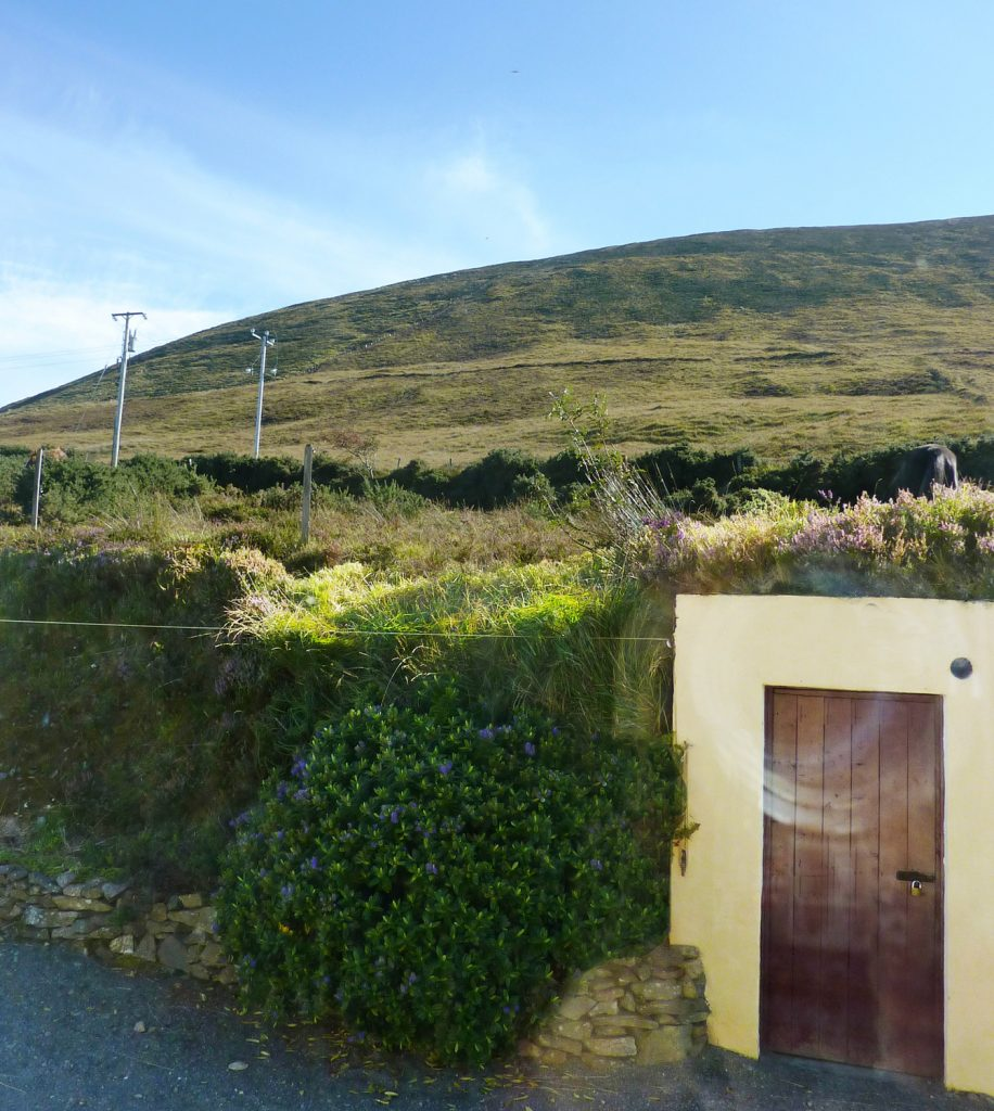 Heather Cottage, Behind the House. Mountain View from Ground Floor Bedroom. Rent an Irish Holiday Home with Sea View along the Wild Atlantic Way in Kerry, Rent a Cottage with Seaview in Ireland along the Ring of Kerry.